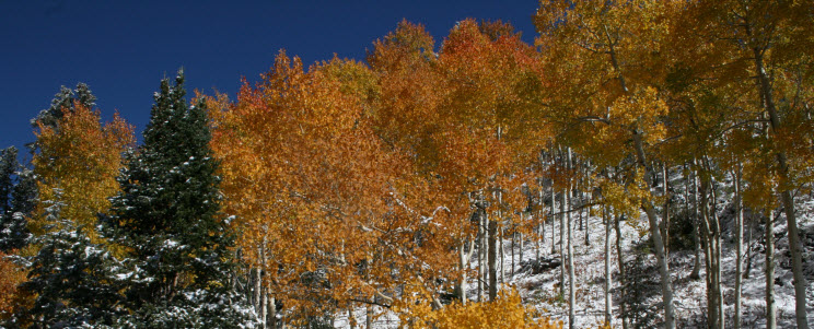 Aspen Mountain Oct 5, 2013